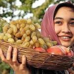 Какие фрукты растут в Таджикистане